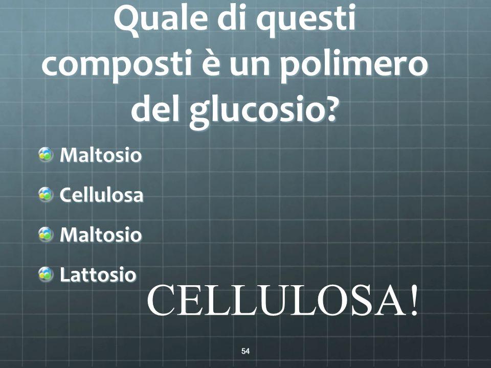 Quale di questi composti è un polimero del glucosio? MaltosioCellulosaMaltosioLattosio 54 CELLULOSA!