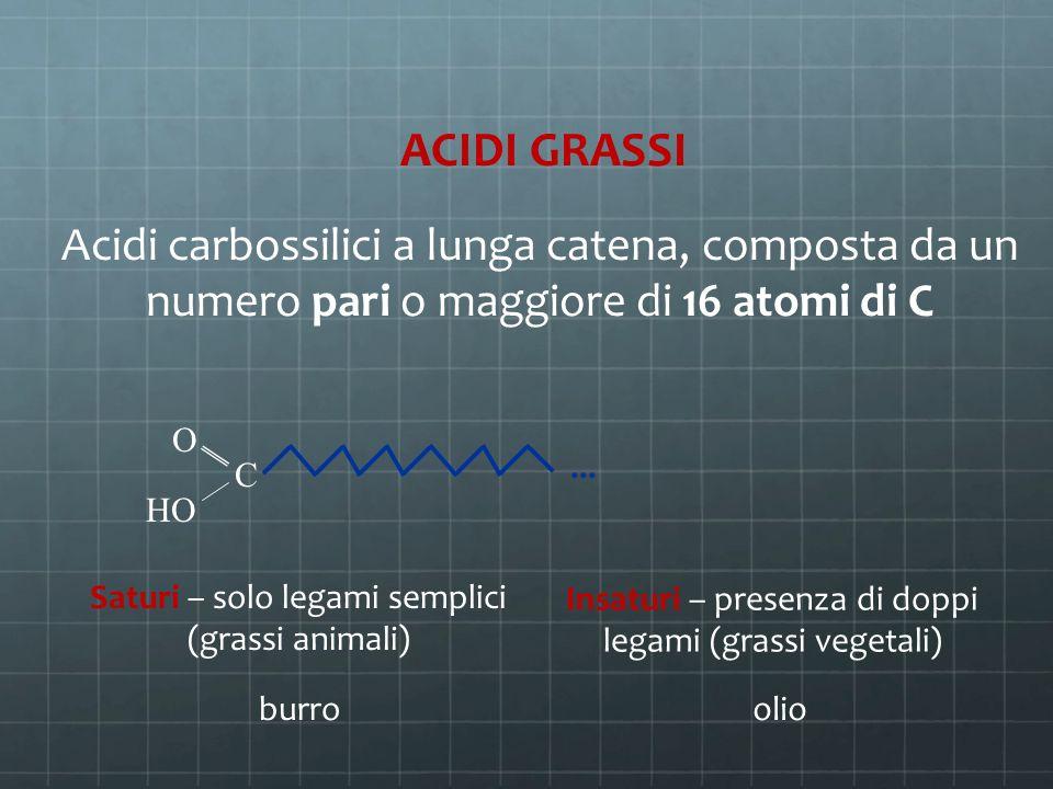 ACIDI GRASSI Acidi carbossilici a lunga catena, composta da un numero pari o maggiore di 16 atomi di C C O HO... Saturi – solo legami semplici (grassi