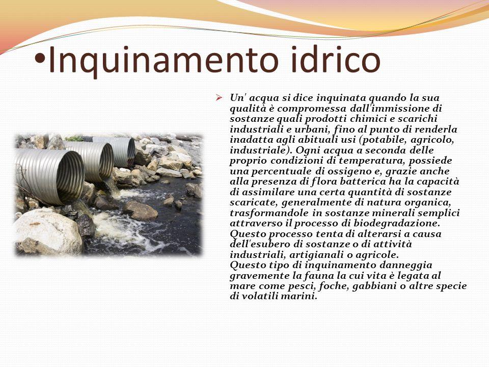 Inquinamento elettromagnetico  L'inquinamento elettromagnetico è un fenomeno figlio del progresso tecnologico e causato dalle onde radio emesse dai campi elettromagnetici.