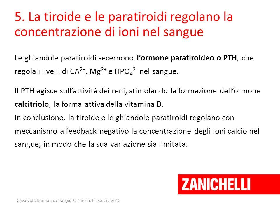 Cavazzuti, Damiano, Biologia © Zanichelli editore 2015 5. La tiroide e le paratiroidi regolano la concentrazione di ioni nel sangue Le ghiandole parat