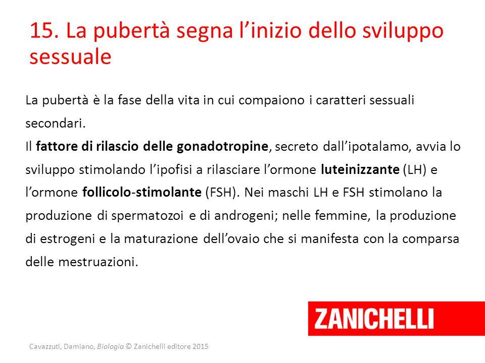 Cavazzuti, Damiano, Biologia © Zanichelli editore 2015 15. La pubertà segna l'inizio dello sviluppo sessuale La pubertà è la fase della vita in cui co