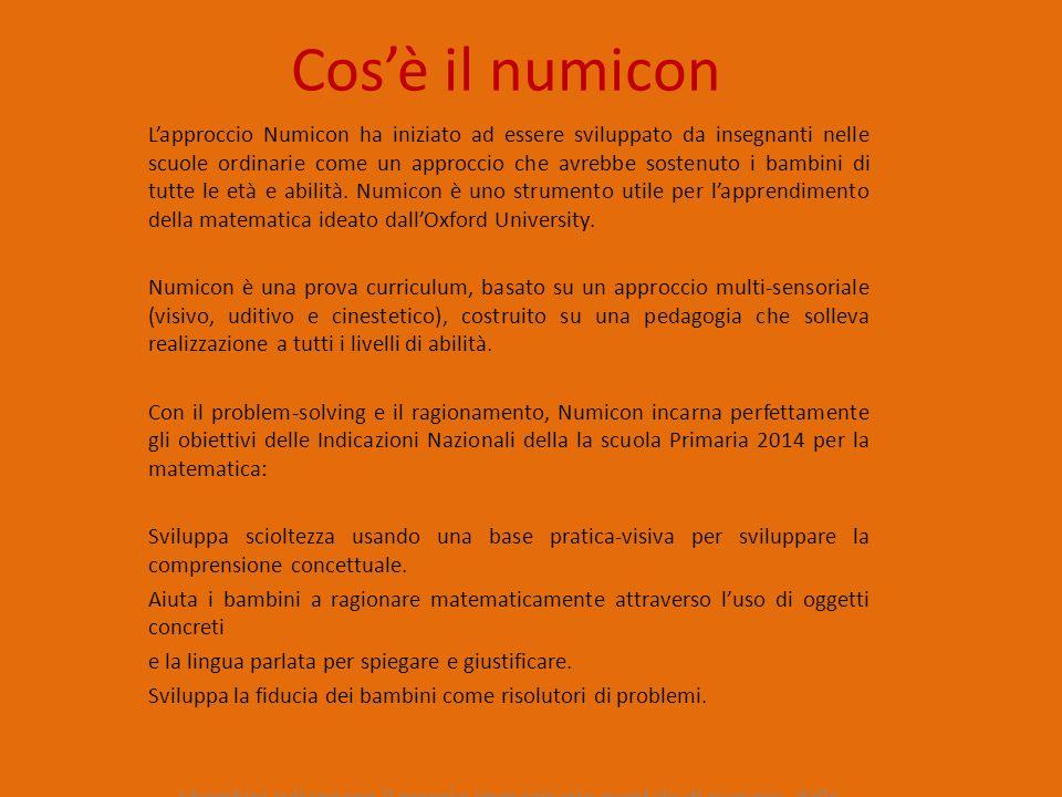 è composto da 10 numicon shapes (placche numicon) di vario colore.
