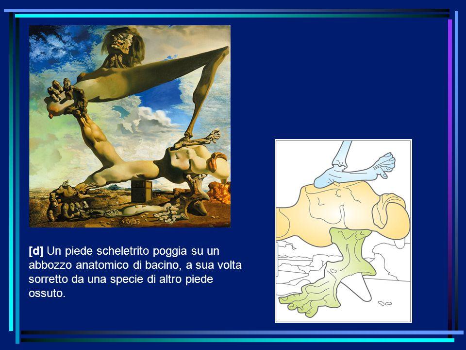 [d] Un piede scheletrito poggia su un abbozzo anatomico di bacino, a sua volta sorretto da una specie di altro piede ossuto.