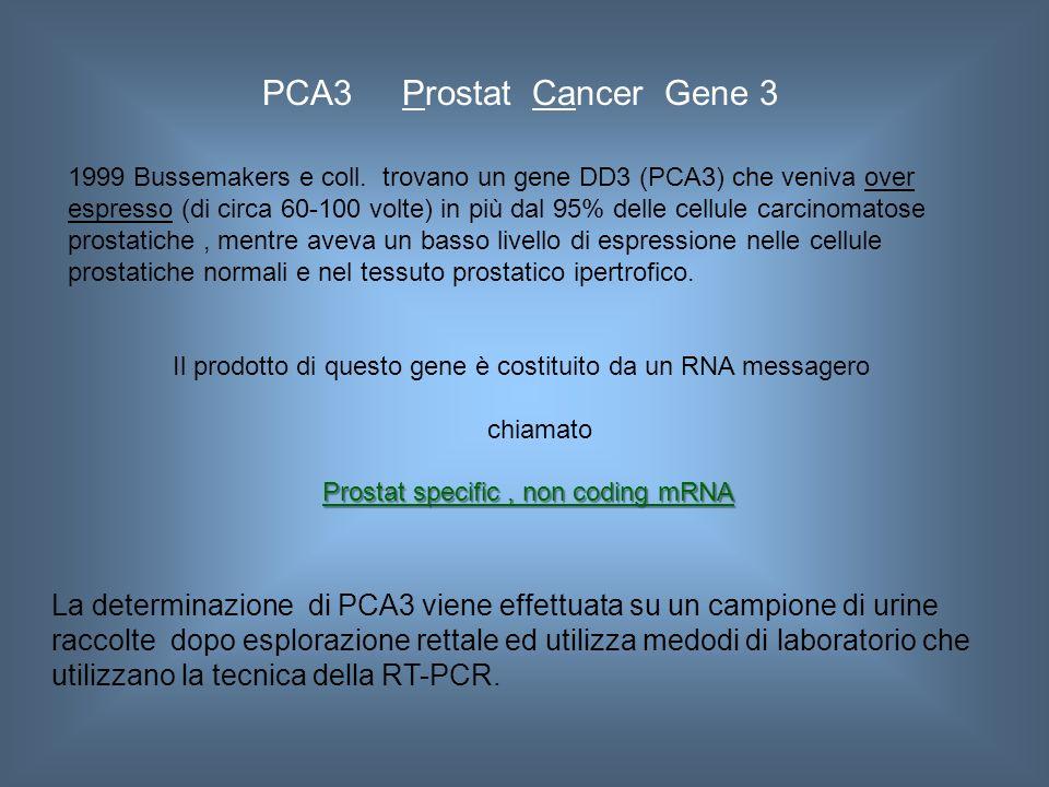 PCA3 Prostat Cancer Gene 3 1999 Bussemakers e coll. trovano un gene DD3 (PCA3) che veniva over espresso (di circa 60-100 volte) in più dal 95% delle c