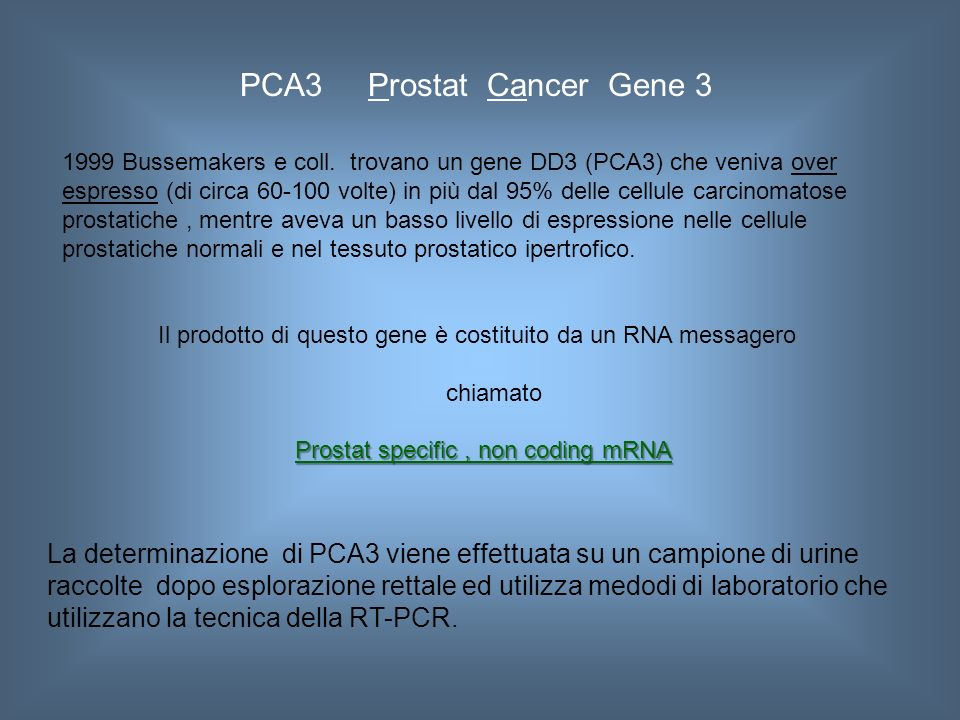 PCA3 Prostat Cancer Gene 3 1999 Bussemakers e coll.