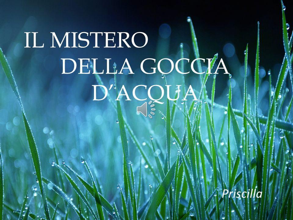 IL MISTERO DELLA GOCCIA D'ACQUA Priscilla