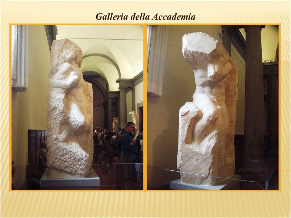 Galleria della Accademia - Tribuna di David, di Michelangelo
