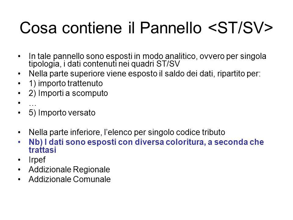 Cosa contiene il Pannello In tale pannello sono esposti in modo analitico, ovvero per singola tipologia, i dati contenuti nei quadri ST/SV Nella parte
