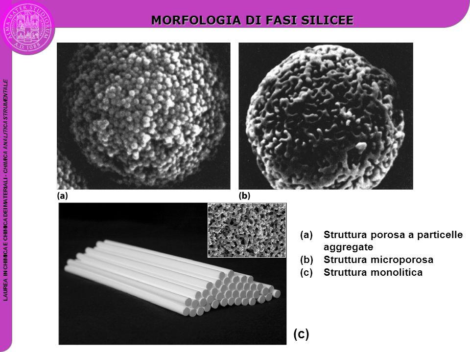 LAUREA IN CHIMICA E CHIMICA DEI MATERIALI - CHIMICA ANALITICA STRUMENTALE (c) MORFOLOGIA DI FASI SILICEE (a)Struttura porosa a particelle aggregate (b