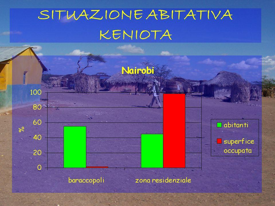 Famiglie che rischiano lo sfratto: 600.000 Appartamenti sfitti: 5 milioni Senza tetto: 70.000 Contratti in nero: 50% Tra il '92 e il 2004: aumenti del 700% del costo degli affitti DISAGIO ABITATIVO IN ITALIA
