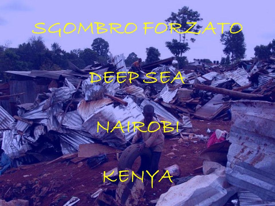 SGOMBRO FORZATO DEEP SEA NAIROBI KENYA