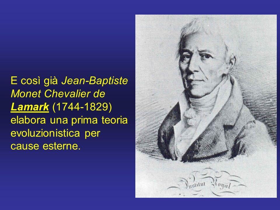 E così già Jean-Baptiste Monet Chevalier de Lamark (1744-1829) elabora una prima teoria evoluzionistica per cause esterne.