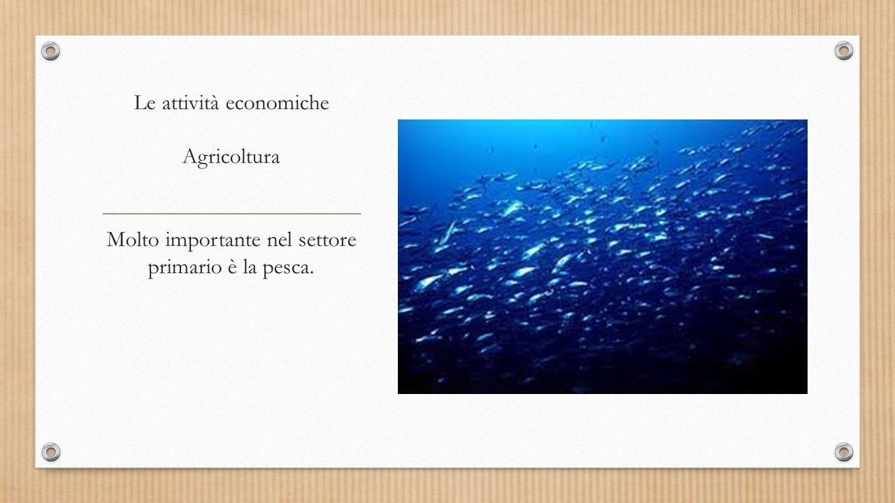 Le attività economiche Agricoltura Molto importante nel settore primario è la pesca.