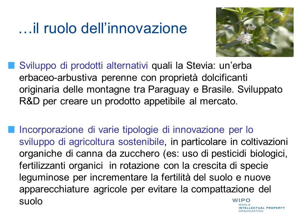 …il ruolo dell'innovazione Sviluppo di prodotti alternativi quali la Stevia: un'erba erbaceo-arbustiva perenne con proprietà dolcificanti originaria delle montagne tra Paraguay e Brasile.