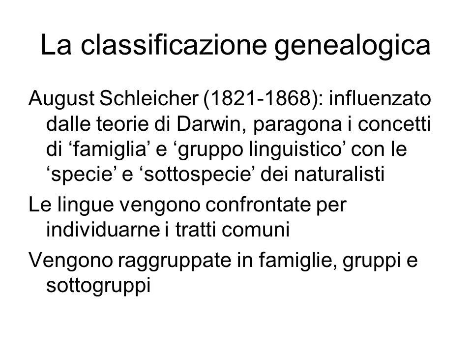 La classificazione genealogica August Schleicher (1821-1868): influenzato dalle teorie di Darwin, paragona i concetti di 'famiglia' e 'gruppo linguist