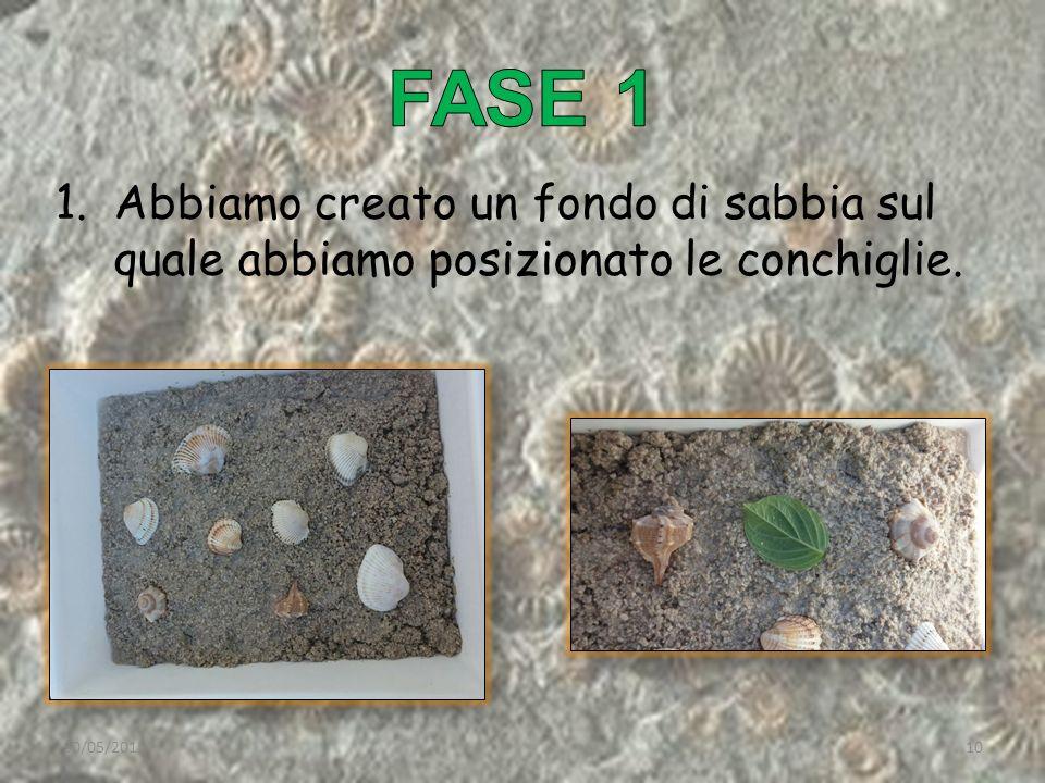 1.Abbiamo creato un fondo di sabbia sul quale abbiamo posizionato le conchiglie. 30/05/201510