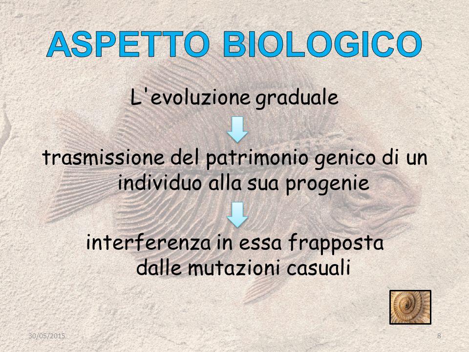 L evoluzione graduale trasmissione del patrimonio genico di un individuo alla sua progenie interferenza in essa frapposta dalle mutazioni casuali 30/05/20158