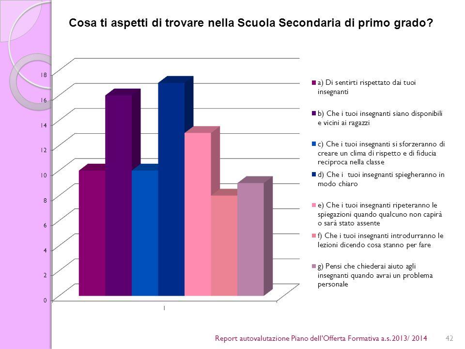 42Report autovalutazione Piano dell Offerta Formativa a.s.