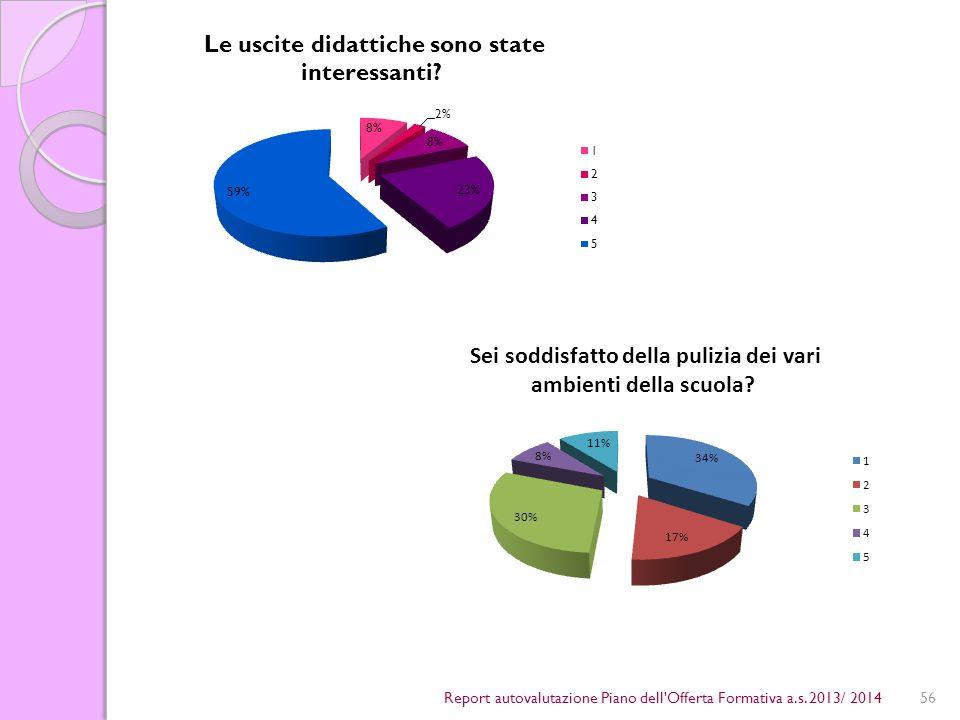 56Report autovalutazione Piano dell Offerta Formativa a.s. 2013/ 2014