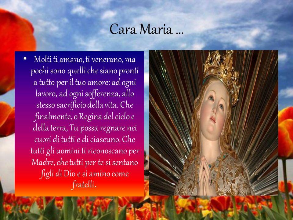 Cara Maria … Molti ti amano, ti venerano, ma pochi sono quelli che siano pronti a tutto per il tuo amore: ad ogni lavoro, ad ogni sofferenza, allo stesso sacrificio della vita.