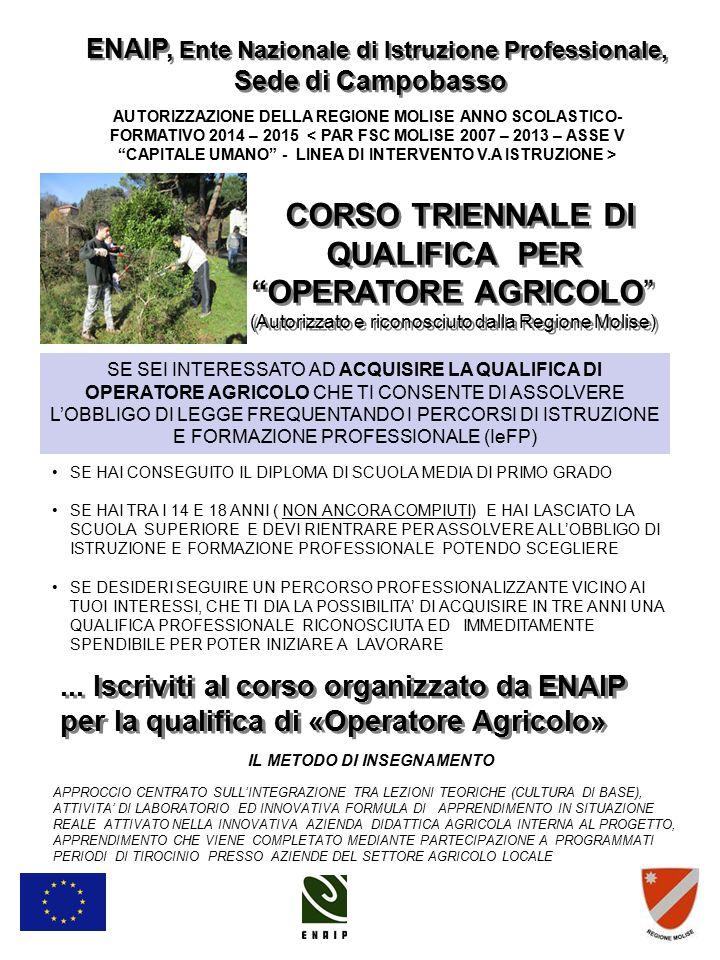 """CORSO TRIENNALE DI QUALIFICA PER """"OPERATORE AGRICOLO"""" (Autorizzato e riconosciuto dalla Regione Molise) CORSO TRIENNALE DI QUALIFICA PER """"OPERATORE AG"""