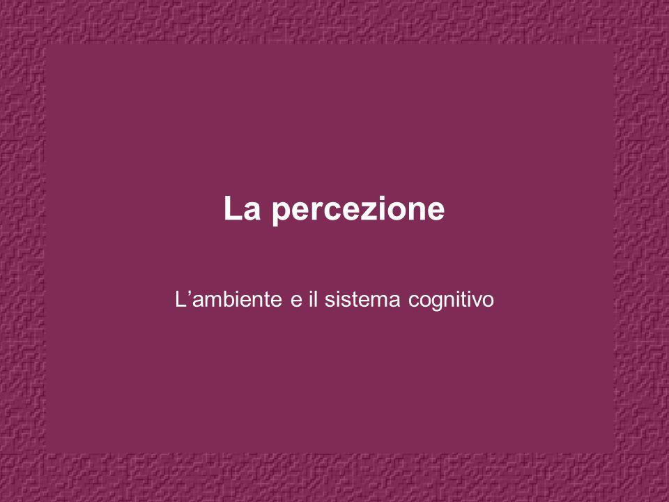 La percezione L'ambiente e il sistema cognitivo