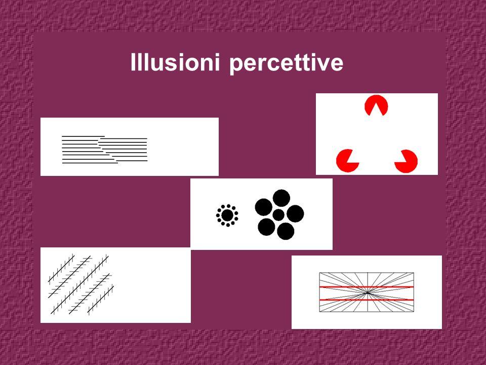 Illusioni percettive