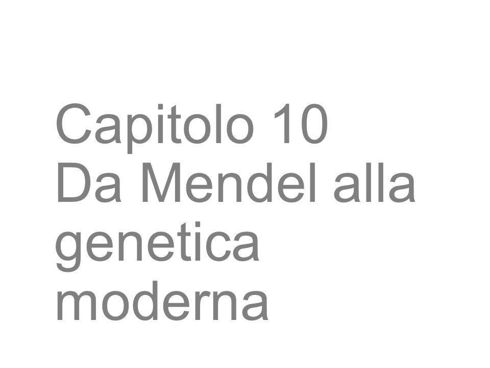 3 Capitolo 10 Da Mendel alla genetica moderna