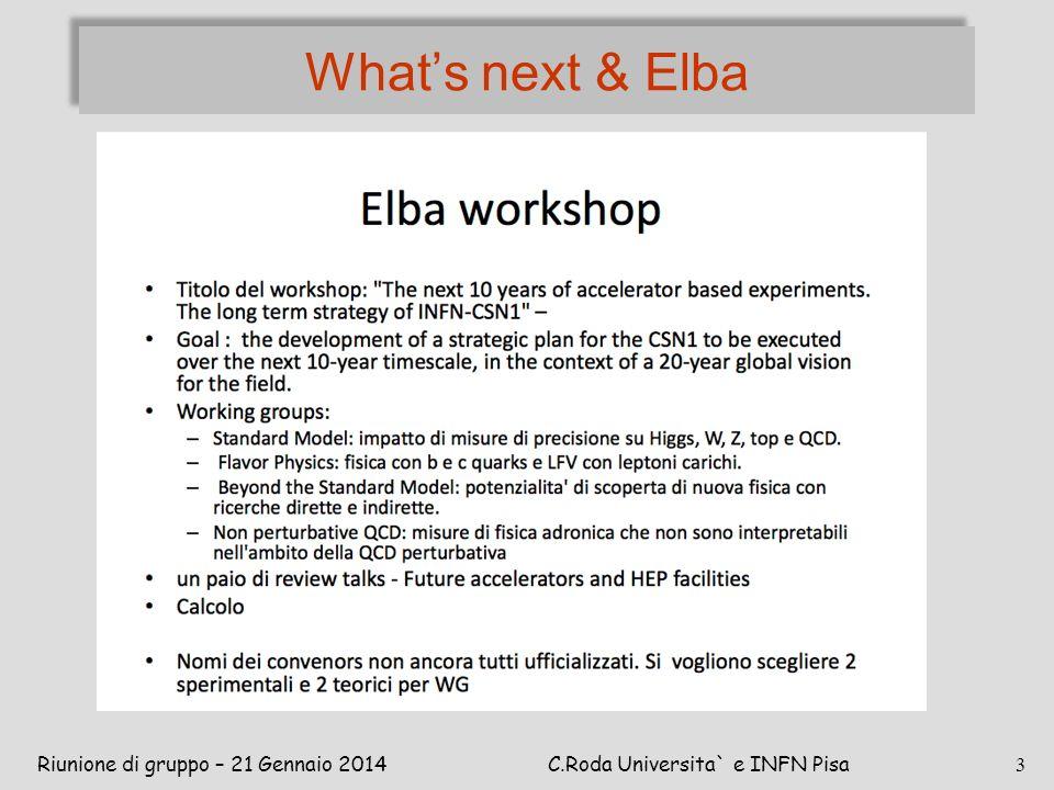 What's next & Elba Riunione di gruppo – 21 Gennaio 2014C.Roda Universita` e INFN Pisa 3