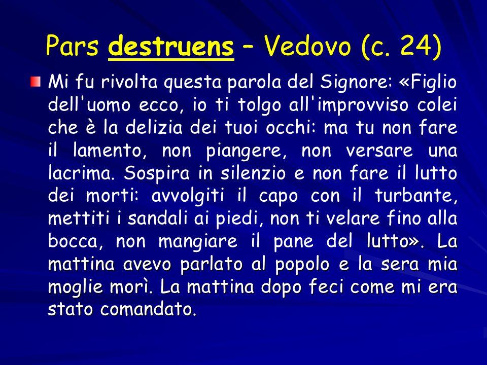 Pars destruens – Vedovo (c.24) lutto».