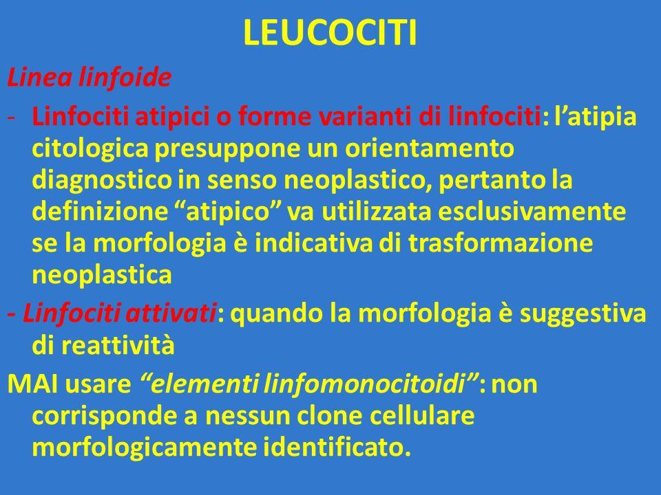 LEUCOCITI Linea linfoide -Linfociti atipici o forme varianti di linfociti: l'atipia citologica presuppone un orientamento diagnostico in senso neoplas