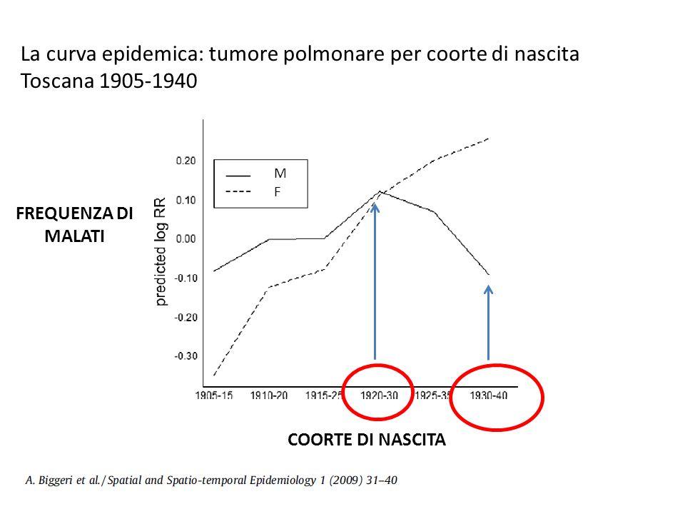 La curva epidemica: tumore polmonare per coorte di nascita Toscana 1905-1940 FREQUENZA DI MALATI COORTE DI NASCITA MFMF