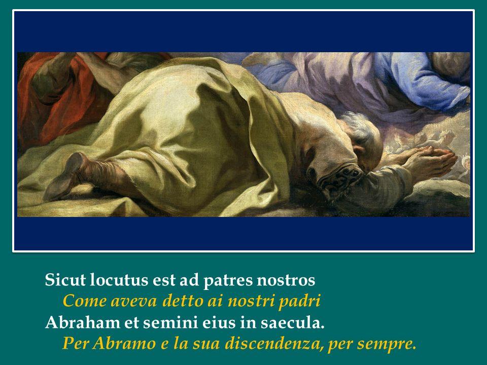 Papa Francesco ha dedicato l'Udienza Generale di mercoledì 18 giugno 2014 in Piazza San Pietro alla Chiesa: Dio forma un Popolo Papa Francesco ha dedi