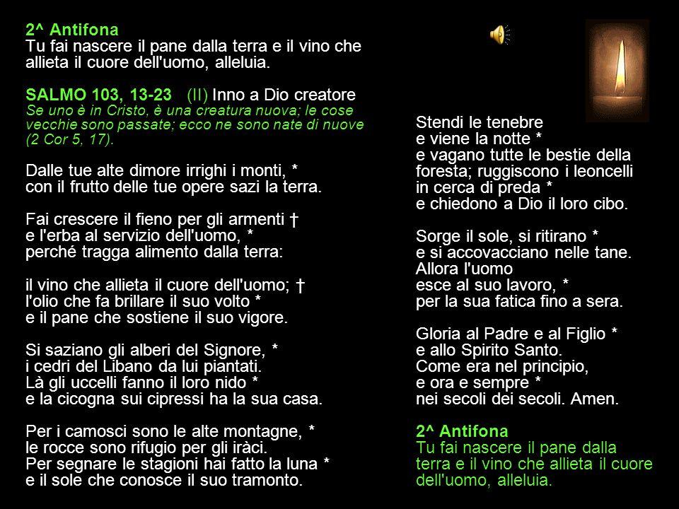 1^ Antifona Signore mio Dio, come un manto ti avvolge la luce, sei rivestito di maestà e di splendore, alleluia.