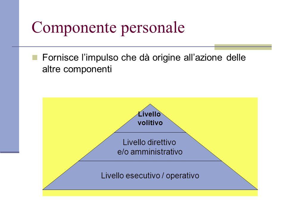 Componente personale Fornisce l'impulso che dà origine all'azione delle altre componenti Livello volitivo Livello direttivo e/o amministrativo Livello esecutivo / operativo
