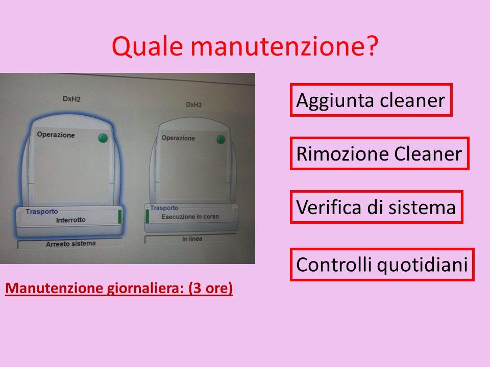 Quale manutenzione? Manutenzione giornaliera: (3 ore) Aggiunta cleaner Rimozione Cleaner Verifica di sistema Controlli quotidiani