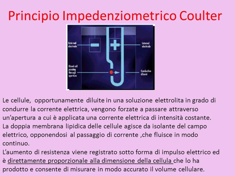Principio Impedenziometrico Coulter Le cellule, opportunamente diluite in una soluzione elettrolita in grado di condurre la corrente elettrica, vengon