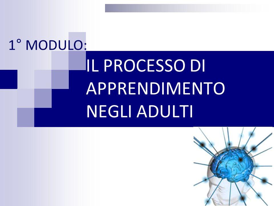IL PROCESSO DI APPREDIMENTO NEGLI ADULTI 1.Gli stili di apprendimento; 2.