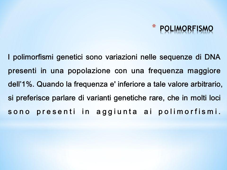 I polimorfismi genetici sono variazioni nelle sequenze di DNA presenti in una popolazione con una frequenza maggiore dell'1%. Quando la frequenza e' i