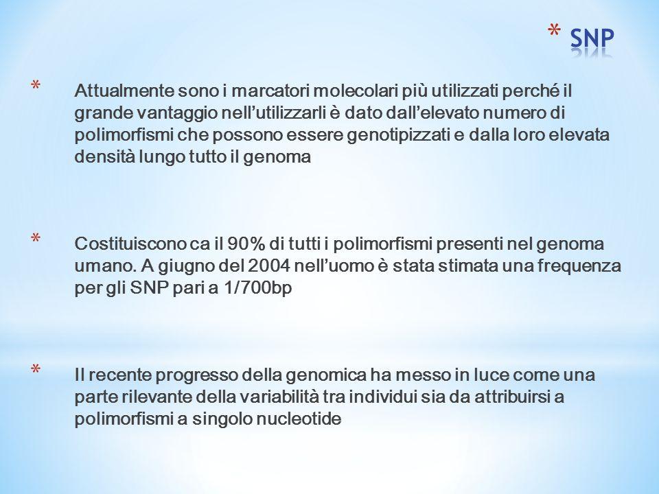 * Attualmente sono i marcatori molecolari più utilizzati perché il grande vantaggio nell'utilizzarli è dato dall'elevato numero di polimorfismi che possono essere genotipizzati e dalla loro elevata densità lungo tutto il genoma * Costituiscono ca il 90% di tutti i polimorfismi presenti nel genoma umano.