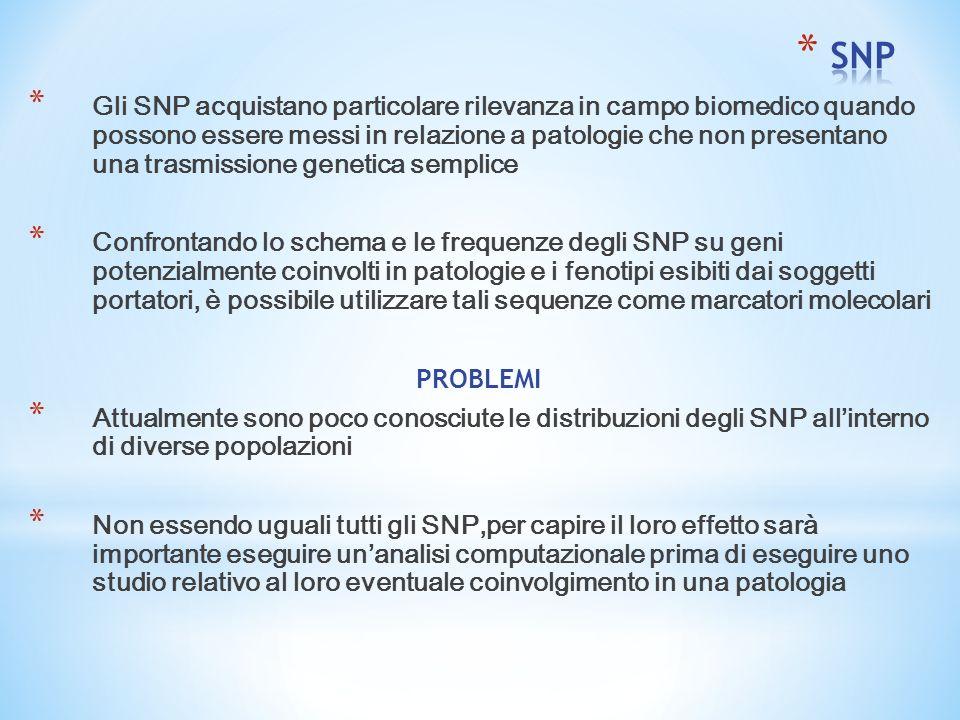 * Gli SNP acquistano particolare rilevanza in campo biomedico quando possono essere messi in relazione a patologie che non presentano una trasmissione