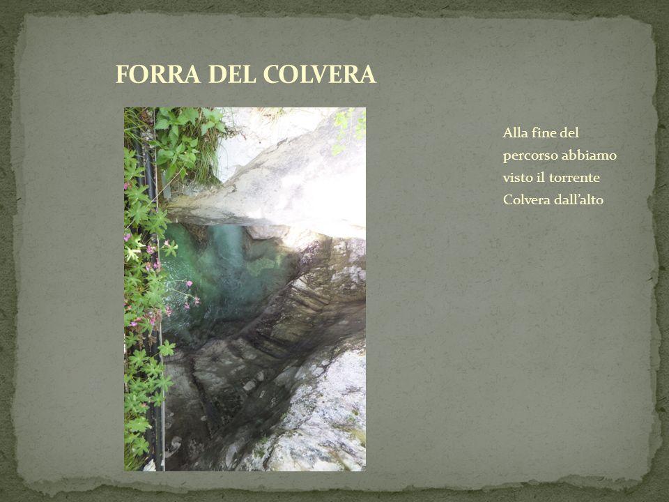 Alla fine del percorso abbiamo visto il torrente Colvera dall'alto