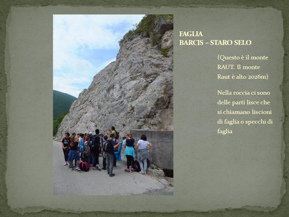 (Questo è il monte RAUT. Il monte Raut è alto 2026m) Nella roccia ci sono delle parti lisce che si chiamano liscioni di faglia o specchi di faglia