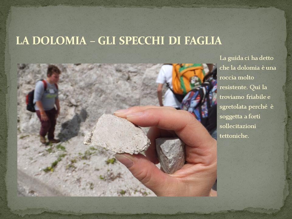 La guida ci ha detto che la dolomia è una roccia molto resistente. Qui la troviamo friabile e sgretolata perché è soggetta a forti sollecitazioni tett