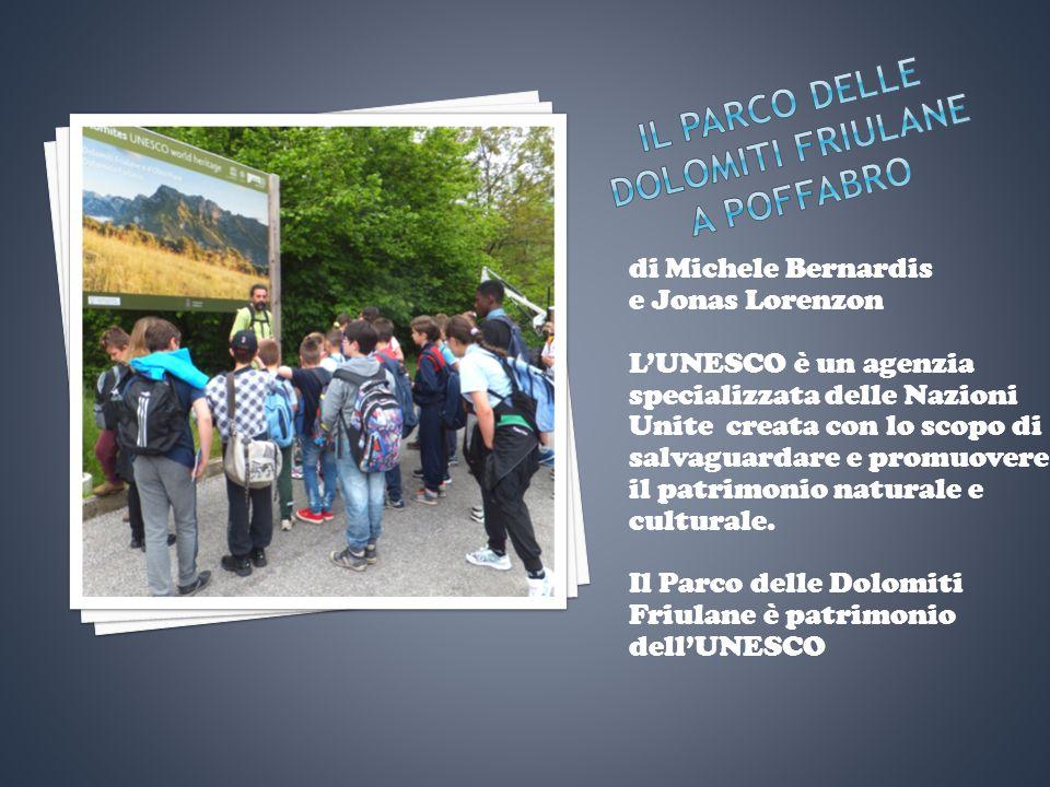 di Michele Bernardis e Jonas Lorenzon L'UNESCO è un agenzia specializzata delle Nazioni Unite creata con lo scopo di salvaguardare e promuovere il patrimonio naturale e culturale.