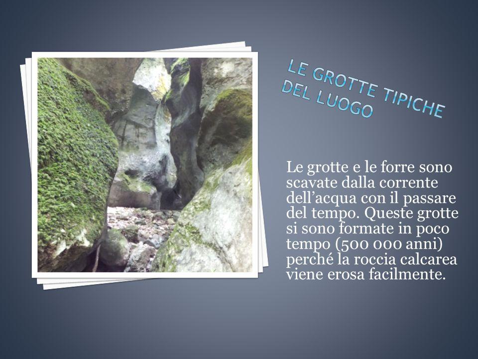 Le grotte e le forre sono scavate dalla corrente dell'acqua con il passare del tempo.