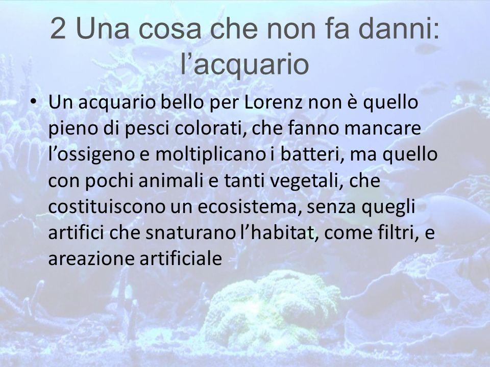 2 Una cosa che non fa danni: l'acquario Un acquario bello per Lorenz non è quello pieno di pesci colorati, che fanno mancare l'ossigeno e moltiplicano
