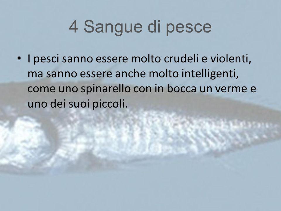 4 Sangue di pesce I pesci sanno essere molto crudeli e violenti, ma sanno essere anche molto intelligenti, come uno spinarello con in bocca un verme e