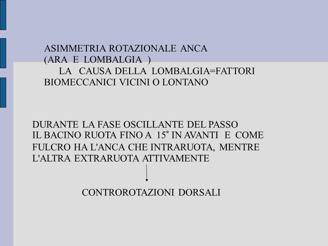 ASIMMETRIA ROTAZIONALE ANCA (ARA E LOMBALGIA ) LA CAUSA DELLA LOMBALGIA=FATTORI BIOMECCANICI VICINI O LONTANO DURANTE LA FASE OSCILLANTE DEL PASSO IL