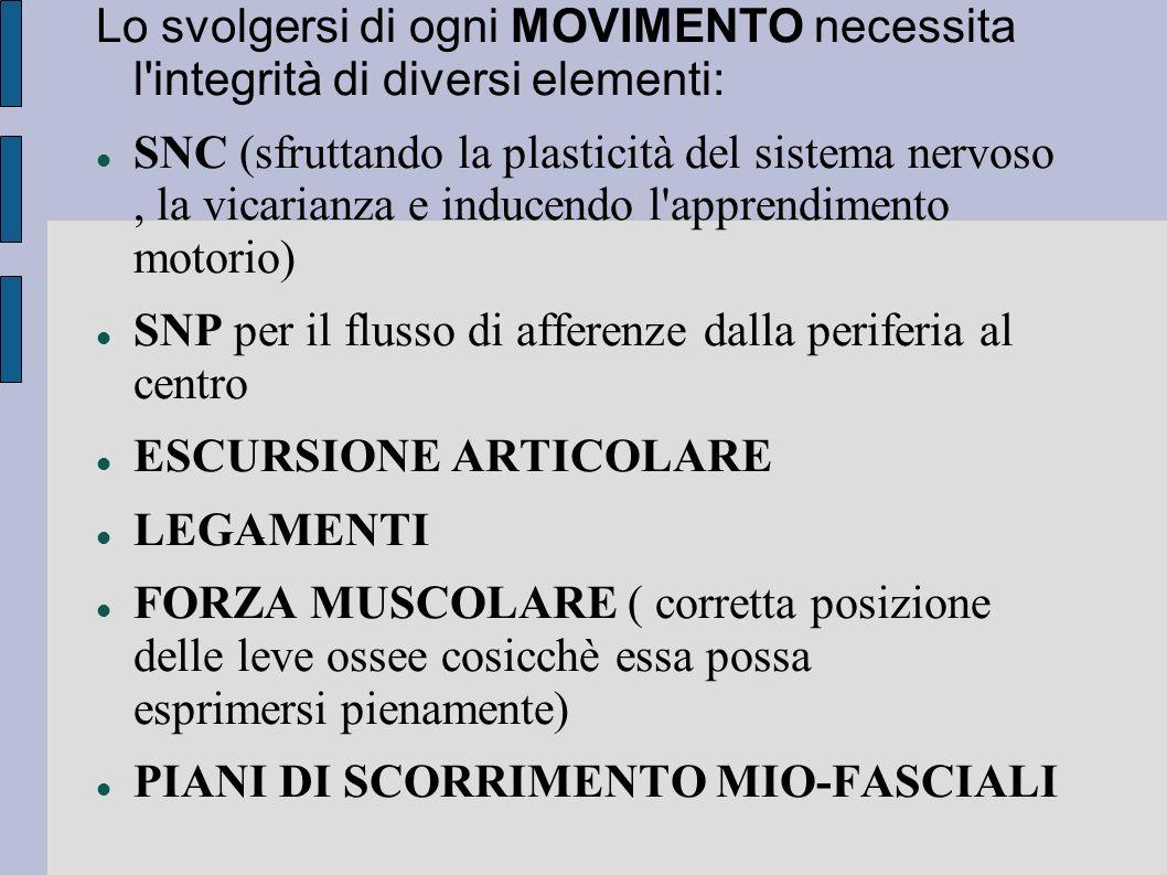 Lo svolgersi di ogni MOVIMENTO necessita l'integrità di diversi elementi: SNC (sfruttando la plasticità del sistema nervoso, la vicarianza e inducendo